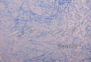 Laser lace Sky blue
